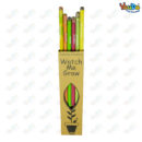 Best out Waste Seed Pencil